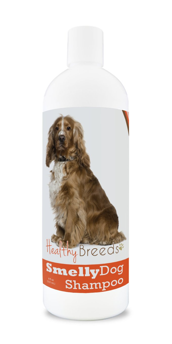 Healthy Breeds Smelly Dog Deodorizing Shampoo & Conditioner with Baking Soda for English Cocker Spaniel - Over 200 Breeds - 8 oz - Hypoallergenic for Sensitive Skin