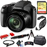 Panasonic Lumix DC-FZ80 Digital Camera + Cleaning Kit + 64GB Memory Card Combo
