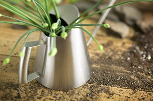 StainlessLUX 72253 Brushed Small Stainless Steel Watering Can (27 Oz) – Quality Gardening Products for Your Home