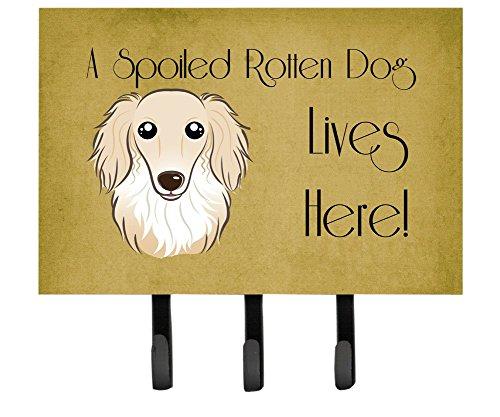 Dachshund Leash Holder (Caroline's Treasures BB1460TH68 Longhair Crème Dachshund Spoiled Dog Lives Here Leash or Key Holder, Large, Multicolor)