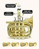 CarolBrass Bb Mini Pocket Trumpet | B-flat Travel