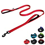 #8: DOGSAYS Dog Leash 6ft Long - Traffic Padded Two Handle - Heavy Duty - Double Handles Lead for Control Safety Training - Leashes for Large Dogs or Medium Dogs - Leash Dual Handle - Reflective (Red)
