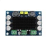 TPA3116DA DC 12V 24V 100W Mono Channel Digital Power Audio Amplifier Board