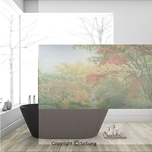 (3D Decorative Privacy Window Films,Maple Trees in the Fall at Portland Japanese Garden One Foggy Morning Scenery,No-Glue Self Static Cling Glass film for Home Bedroom Bathroom Kitchen Office 36x24 Inc)