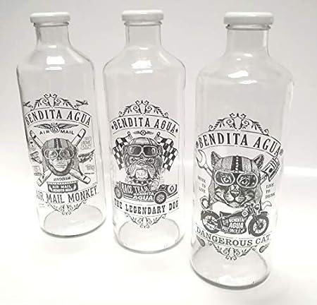 BENDITA AGUA Botellas DE Cristal 1 litro Colección Intrepidos (3 Piezas): Amazon.es: Hogar