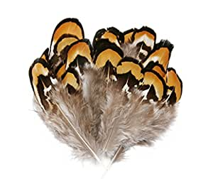 Hgshow Silver Pheasant Feathers 2-3 inches,hand sorting,per pack of 80