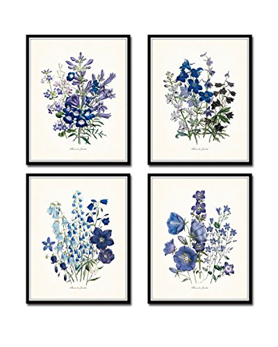 Matte Giclee Art (Fleurs de Jardin Botanical Print Set No.13 Set of 4 Giclee Fine Art Prints - Unframed)
