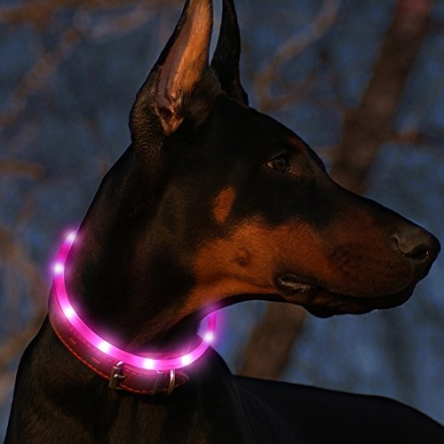 Led Dog Collar USB Rechargeable Glowing Pet Safety Collars Water Resistant Light up Improved Dog Visibility & Safety Adjustable Flashing Collar Best Gift for Dogs by Bseen (Pink)