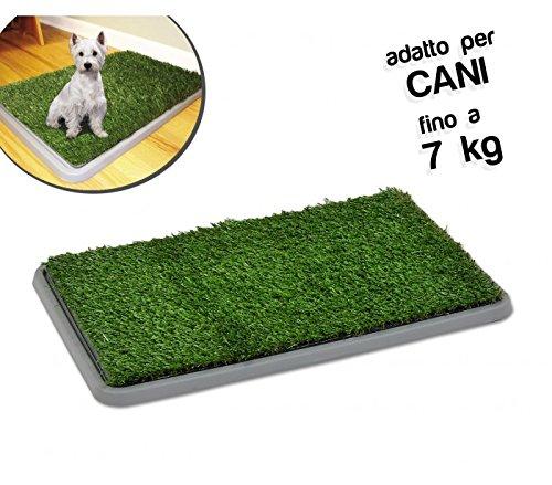 45 opinioni per Lettiera 68 x 43 x 5 cm erba sintetica per animali domestici toilette POTTY