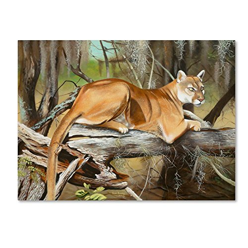 Florida Panther by Geno Peoples, 35x47-Inch Canvas Wall Art ()