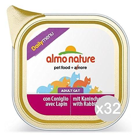 Almo nature Set 32 Gato 355 Bandeja Gr 100 Daily Conejo Comida para Gatos: Amazon.es: Productos para mascotas
