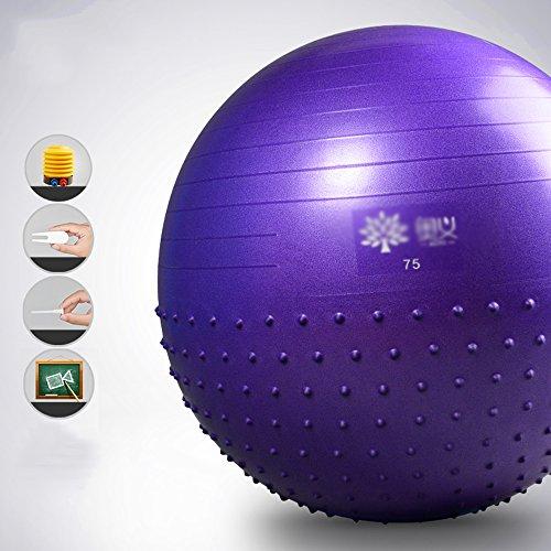 Ballon D'exercice (75Cm), Balle De Yoga, Ballon De Naissance Avec Pompe Rapide, Anti-Burst & Extra Épais, Chaise De Balle Heavy Duty, Stabilité Balle Supports 1000Lbs (Bureau Et Maison),Purple