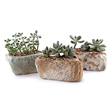"T4U 5.25""Distinctive Stone Shape Sucuulent Cactus Plant Pots Flower Pots Planters Containers Window Boxes With Small Hole Set of 3"