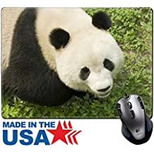 "MSD Natural Rubber Mouse Pad/Mat with Stitched Edges 9.8"" x 7.9"" IMAGE ID: 4974698 close up Giant panda in national park photo"