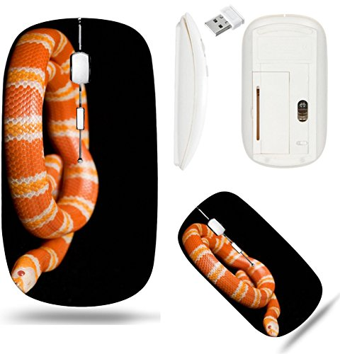 Liili Wireless Mouse White Base Travel 2.4G Wireless Mice with USB Receiver, Click with 1000 DPI for notebook, pc, laptop, computer, mac book IMAGE ID: 3926948 Albino Tangerine Honduran Milk Snake Lam (Tangerine Snake)