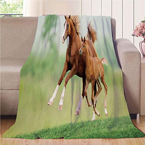 (Throw Blanket Custom Cozy Blanket Perfect for Couch Sofa or Bed Beautiful 3D Printed,Horse Decor,Running Chestnut Horses Mare and Foal Meadow Scenic Summer Day Outdoors,Light Brown Green,31.50