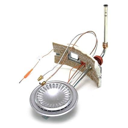 Aosmith 9003382005 calentador de agua quemador Asamblea