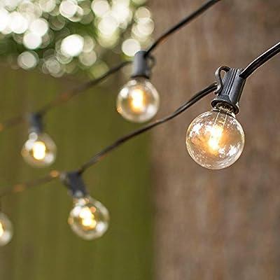 LED Globe String Lights, G40 Bulb, 25 Ft Black C7 Strand, Warm White