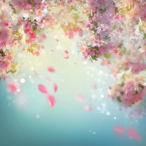 Fotohintergrund D 8428 150 X 150 Cm Floral Kamera