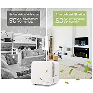 Mini Dehumidifier Electric Ultra-Quiet 650ML Home Dehumidifier Auto-Off Compact and Perfect for Bedroom, Closets, Basement and Other Small Room & Space