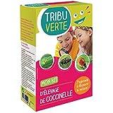 Tribu verte Kit d'élevage de coccinelles