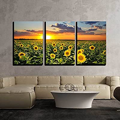 Made With Love, Marvelous Piece, Field of Blooming Sunflowers on a Background Sunset x3 Panels