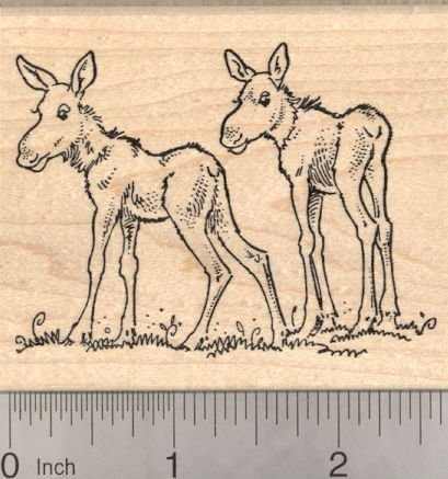Moose Calf Twins Rubber Stamp, Baby Moose