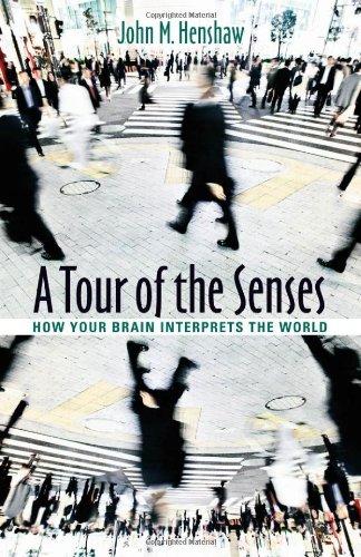 A Perambulation of the Senses: How Your Brain Interprets the World