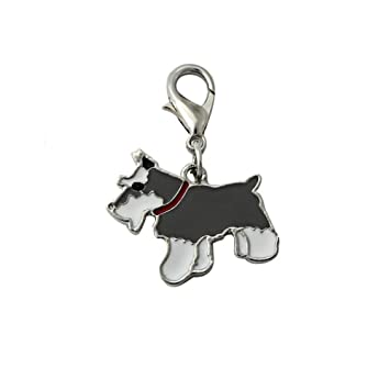 Amazon.com: Stock Show 25 mm. colgantes collar de mascotas ...