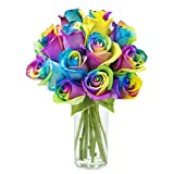 Mother's Day Collection: 12 Fresh Cut Rainbow-Swirl Roses with Vase - by KaBloom