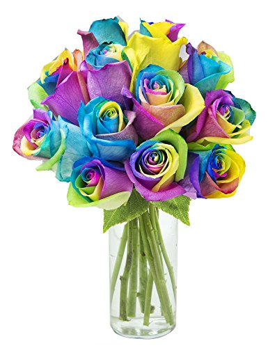 bouquet-of-fresh-cut-rainbow-roses-12-rainbow-swirl-roses-with-vase-by-kabloom