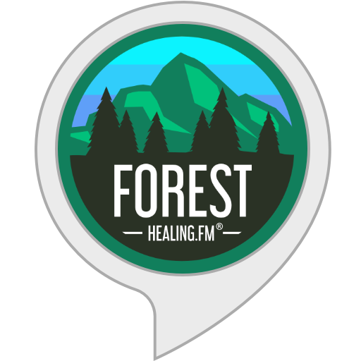 Best Forest Sounds by Healing FM