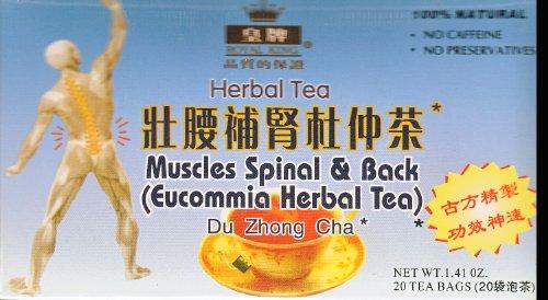 Muscles & Spinal Retour thé à base de plantes Eucommia - 20 Sachets