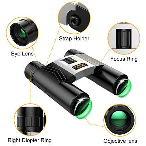 Review Binoculars for Adults, 10×32