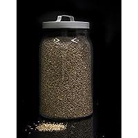 Hinojo semillas a granel - 1000