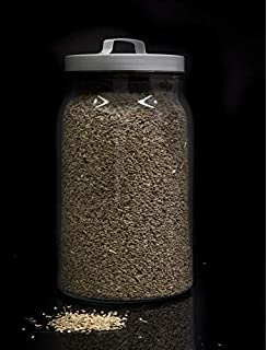 Fenogreco (Alholvas) a granel - 500 grs: Amazon.es ...