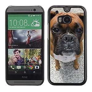 TopCaseStore / la caja del caucho duro de la cubierta de protección de la piel - Bullmastiff Boxer Dog Pet Breed - HTC One M8
