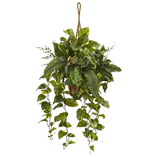 Nearly Natural Mixed Pothos and Boston Artificial Fern, Green