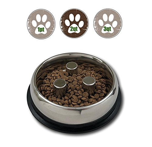 Top Dog Chews Brake-Fast Slow Feed Stainless Steel Bowls (2 Quart, 64oz, 5 Cups)