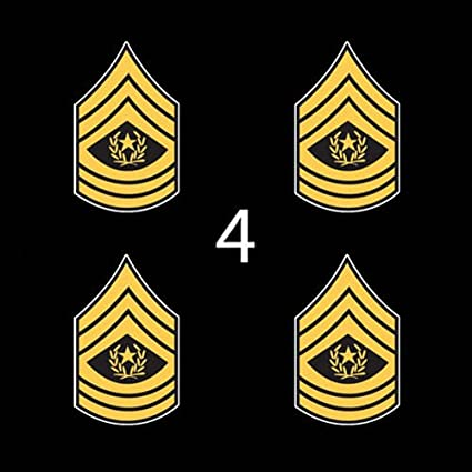 E-9 Command Sergeant Marjor Rank Sticker Decal Vinyl CSM OR-9 E9 US Army