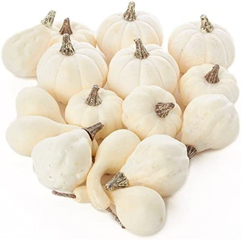 Amazon Com Factory Direct Craft Package Of 16 Assorted Harvest Off White Artificial Gourds And Pumpkins For Halloween Fall And Thanksgiving Decorating Furniture Decor