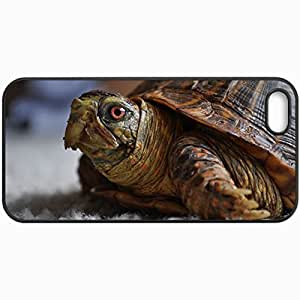 Customized Cellphone Case Back Cover For Case For Ipod Touch 5 Cover , Protective Hardshell Case Personalized Turtle Head Shell Black