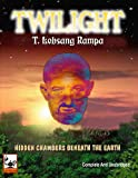 img - for Twilight: Hidden Chambers Beneath The Earth book / textbook / text book