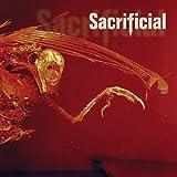 Auto Hate by Sacrificial (2002-10-27)
