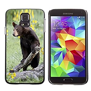 Cute Painting Slim pc Cover - Samsung Galaxy S5 ( Funny Curious Bear In The Field )
