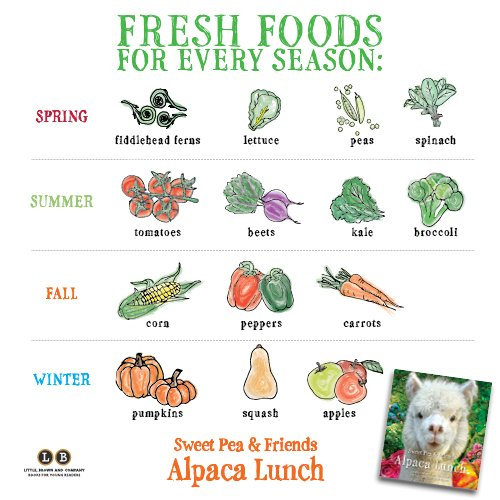 Alpaca Lunch (Sweet Pea & Friends) by Little, Brown Books for Young Readers (Image #2)