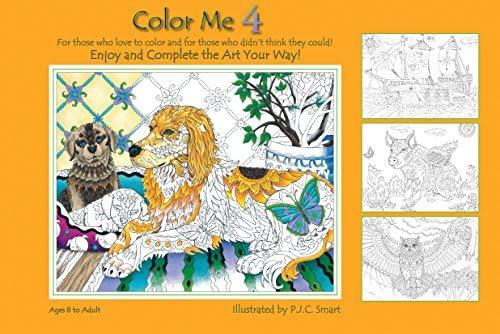 Amazon Com Color Me Your Way 4 9780990386018 Pamela