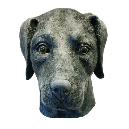 Off the Wall Toys Black Labrador Retriever Dog Costume Face Mask Kennel Club -