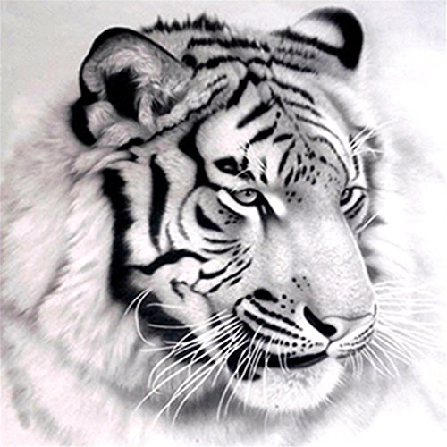 5D DIY Diamond Painting by Number Kits, A Lazy Tiger Embroidery Painting Wall Sticker for Wall Decor, 12 x (Tiger Kit)