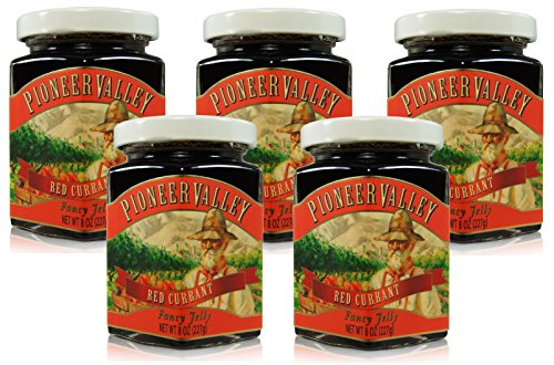 Pioneer Valley Gourmet Red Currant Jelly 8 oz. - 5 pack by Pioneer Valley